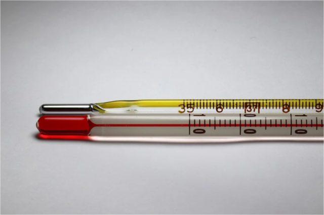 体温計測機能付きスマートウォッチ